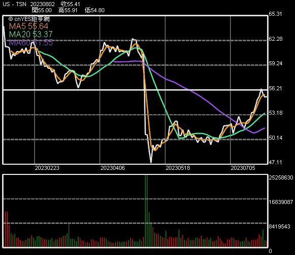 泰森食品股價走勢